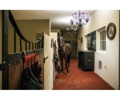 Pensjonat dla koni w pałacowej stajni